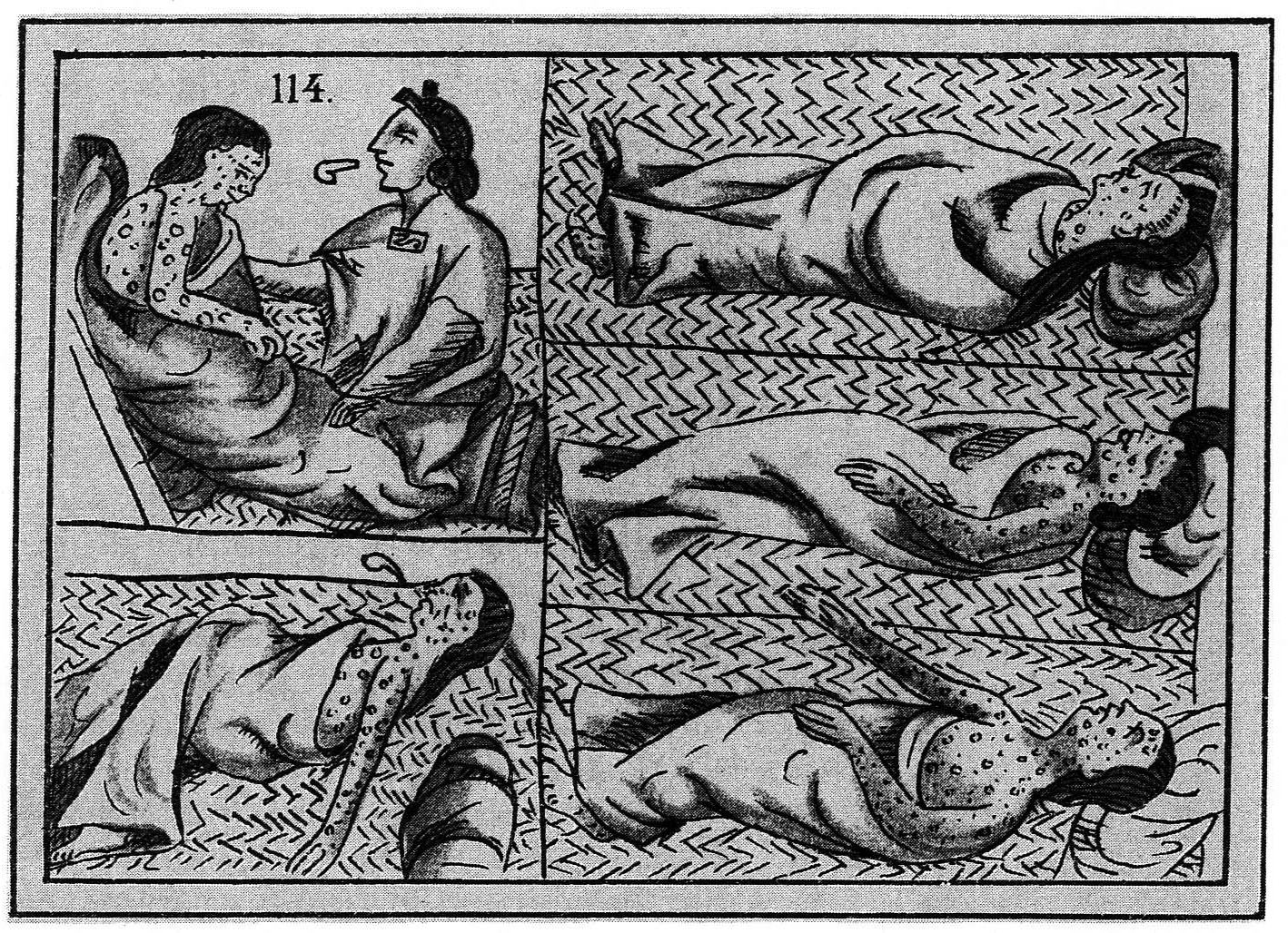The Columbian Exchange - History Illustrated
