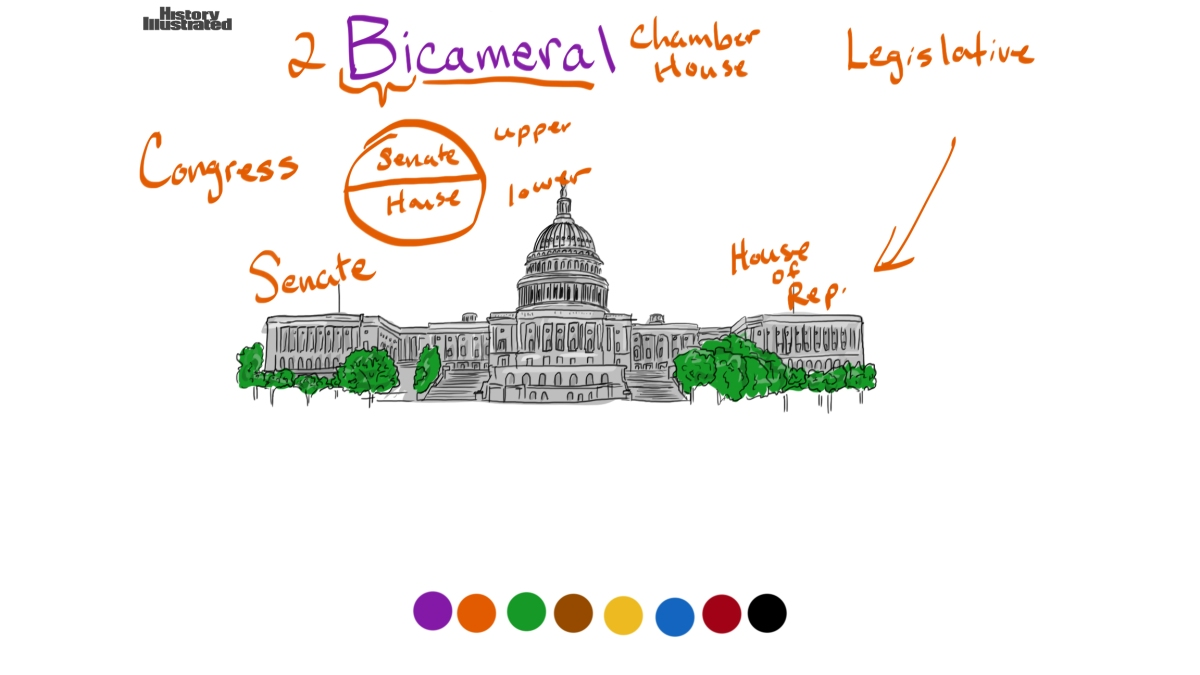 Bicameral legislative branch